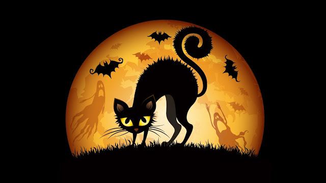 gato-negro-halloween