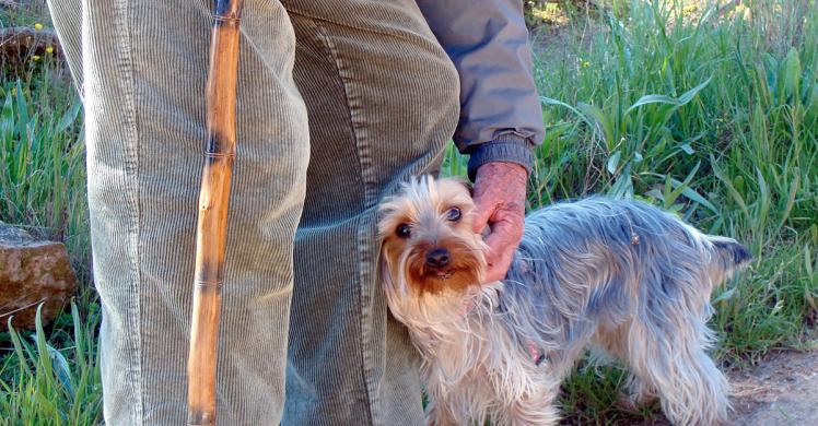 perro y abuelo.png